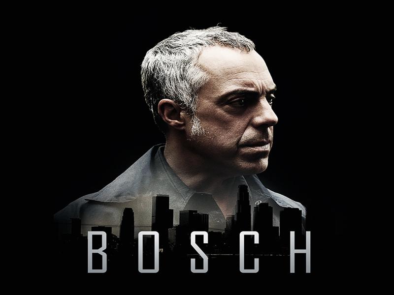 Bosch 800 600